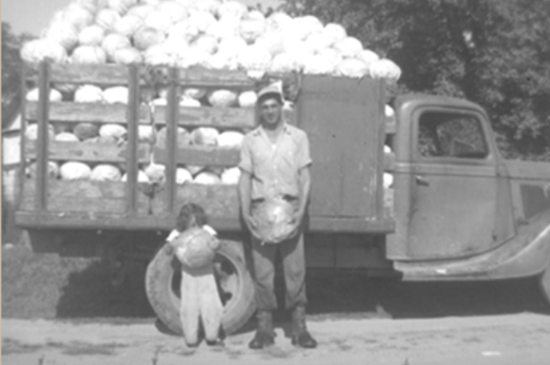 1940's A Vegetable Boom