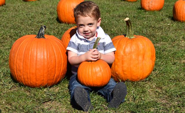 Home-fall-weekday-pumpkin-picking